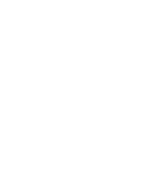 Silhouette of Wales