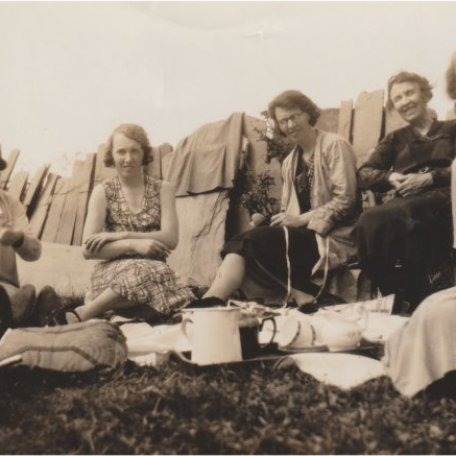 Y teulu yn cael picnic ar un o gaeau'r cartref/The family on a picnic in a field at home: Image 16